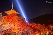 至極の紅葉ライトアップ 京都・清水寺