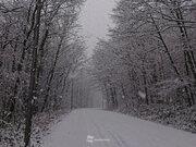 帯広など北海道の内陸は湿った雪 電線着雪や路面状況に注意