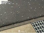 新潟県で急な雨や霰(あられ) せわしなく変わる時雨模様