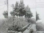 新潟、金沢、鳥取で初雪 各地とも平年より遅い観測