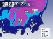 今夜は関東で雨や雪 東京西部や埼玉北部で雪が混じる所も