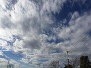 関東も午後は日差し復活 東京は3日ぶりの10℃超えに
