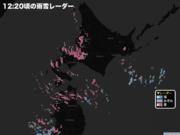 札幌で雪強まる 午後も視界不良に注意を