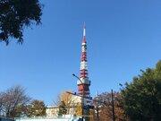 今日14日(金) 東京は12月一番の冬晴れ 快晴の空が広がる