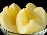 デコボコしている方が良い?  美味しいりんごの見分け方