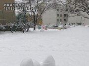 北海道で積雪急増 路面状況の変化に注意