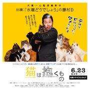 「水曜どうでしょう」名物ディレクター・藤やん版『猫は抱くもの』バナー誕生、札幌シネマフロンティアで掲出