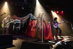 画像:RED WARRIORS、アルバム『Swingin'Days』の完全再現ライブにて完全復活