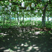 藤巻亮太、NEXCO中日本CMソング「僕らの街」の配信リリースが決定