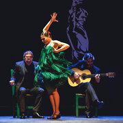 フラメンコの女王、迫力の本編ダンスシーン入手『パッション・フラメンコ』
