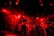 【フレデリック ライヴレポート】『フレデリズムツアー2017 QUATTRO編~僕のTOGENKYO~』2017年10月25日 at 渋谷CLUB QUATTRO