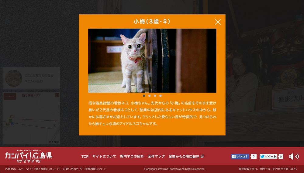 広島CAT