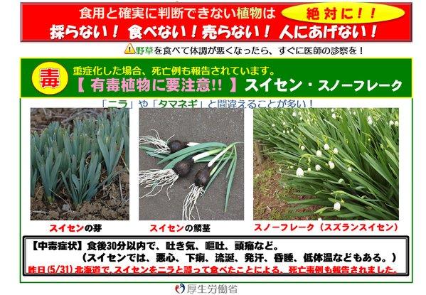 消費者庁が有毒植物の誤食に注意呼びかけ
