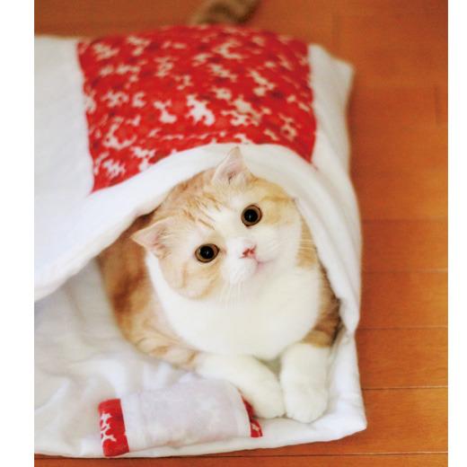 猫用のお布団1