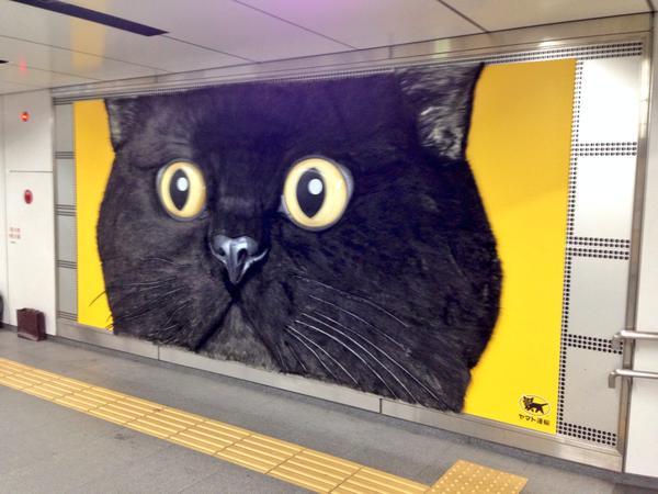 東横線渋谷駅の巨大クロネコ
