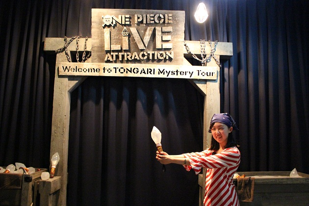 ONE PIECE LIVE ATTRACTION7