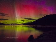 幻想的な赤いオーロラがニュージーランドで撮影される