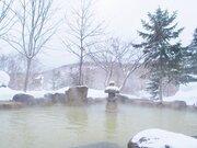 超ワールドワイド!ニセコの「雪見混浴」 周りは外国人客ばかり...まるで海外のスパみたい【北海道・ニセコグランドホテル】