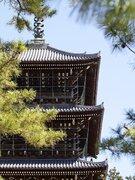 JR四国が善通寺で研修 「精神を鍛え、サービスレベルを向上」って、具体的にどういうこと?