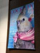 インコが街頭演説で「ストップ迷子!」 掛川花鳥園で展示・販売のポスターが面白い
