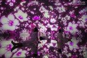 チームラボの水に入るミュージアム、3/1より桜の演出
