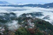 奈良県の「奈良の木ブランド課」は、どんな活動をしている部署なの?