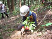 全3回「高尾の森 森林体験スクール」親子30名募集、3/12受付開始