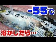 釣りYouTuber、佐賀県とコラボ! なんと1晩で20万再生