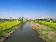 「新宿よりも、埼玉が好き」 外国人観光客を魅了した「埼玉のほどよさ」体験談