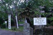 タヌキを祀った神社が取り壊し? 小松島市に詳細を聞くと、難しい事情も