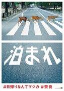 奈良の切実すぎる願い→「泊まれ」 話題の直球ポスター、制作元を直撃すると...