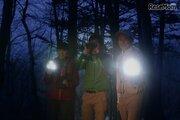 闇夜に潜む野生動物を観察、ピッキオ「ワイルドサファリツアー」