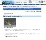 愛知県の小学生親子対象「金魚の学校」応募は6/15まで