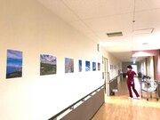 病院の廊下を「空」でいっぱいに コロナと闘う医療従事者を癒すアート企画