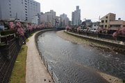 なにやるの? 栃木県の大使、「担当名」がバリエーション豊富すぎる