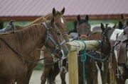 石川県内で「馬場」という地名を探ってみたら歴史が次々と明らかに...