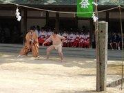 「精霊様」を相手に相撲を取る 今治・大山祇神社に伝わる神事