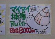 日給8000円で実働5時間 東京の離島に、「カタツムリを捕まえるバイト」が存在した