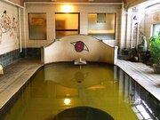 天子の壁画に仏像、謎のシンボルも... 独特の雰囲気に圧倒される、鳴子温泉のフシギ混浴【宮城県・ 旅館大沼】
