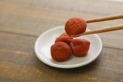 画像:年を取ってから良さが分かったもの 「木綿豆腐。昔は絹一択だったのに」「漬け物やな」