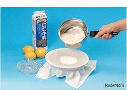 画像:【自由研究・化学】牛乳からチーズを作り、タンパク質の性質を調べる(中学生向け)