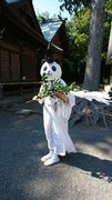 神奈川県最古の神社「有鹿神社」にパンダ宮司 なぜ鹿ではなくパンダ?いつ会える?禰宜に話を聞いた
