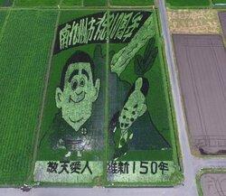 画像:南九州市の田んぼアート(画像提供:農事組合法人「たべた」実行委員会)