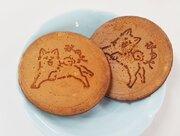 「秋田犬」ブーム、お土産にも! かわいいグッズが増殖中