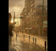 まるで映画のワンシーン...! 夕日の中、大粒の雨がキラキラ輝く大阪の街が幻想的で美しい