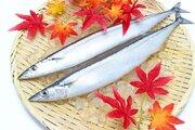 「サンマの町」女川で初水揚げ2018年の漁に期待集まる