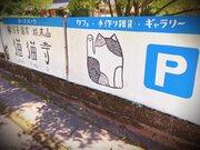 ニャンコ住職がお出迎え! 京都・猫猫寺(にゃんにゃんじ)、ネコ好きの楽園でしかない