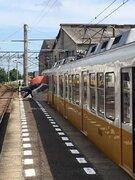 香川の駅構内に「巨大スズメ」あらわる! 目撃者の証言「かわいい」「ゆるくていいなあ」