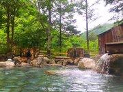 温泉×森林浴=極上の癒し! 日光の大自然に包まれた絶景混浴【平家平温泉・御宿こまゆみの里】