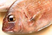石川県の郷土料理「鯛の唐蒸し」 どんなものか知ってる?